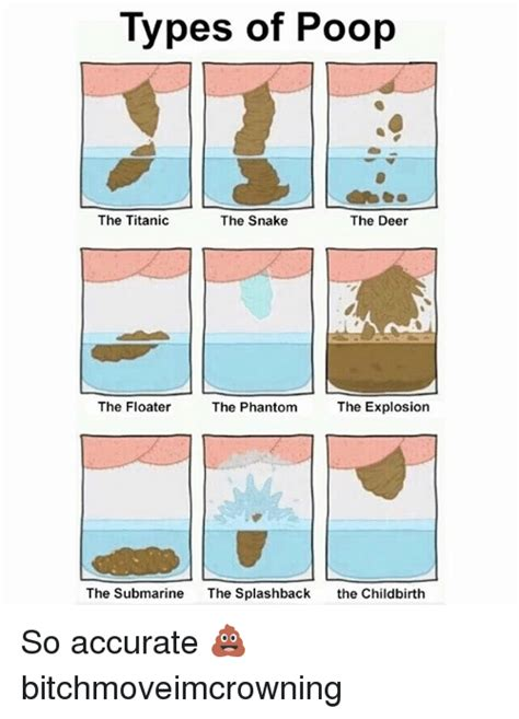 Different Kinds Of Memes - 25 best memes about types of poop types of poop memes