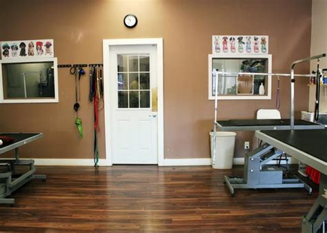 hair salons edmonton south east dazzling dogs grooming edmonton ab 18920 87 ave nw