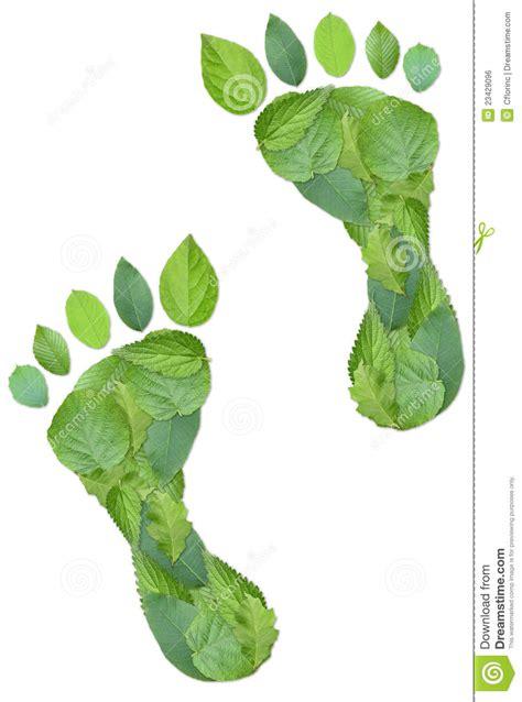 imagenes huellas verdes huellas verdes imagen de archivo libre de regal 237 as