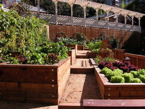 beautiful raised garden beds wooden raised beds for beautiful edible gardens