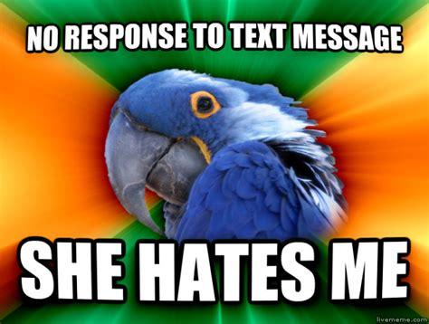 No Response Meme - livememe com paranoid parrot