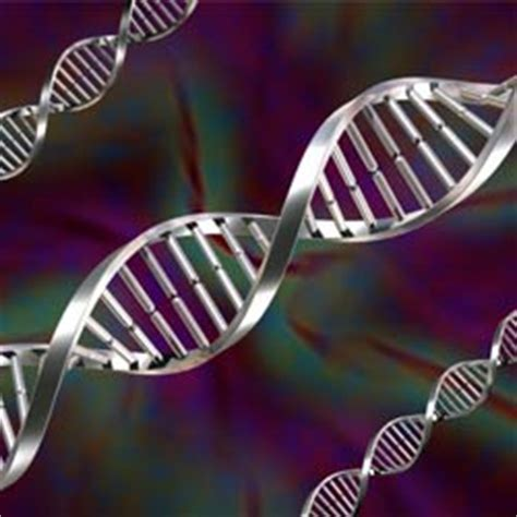 Mba In Biotechnology Salary by Courses In Biotechnology And Bioinformatics