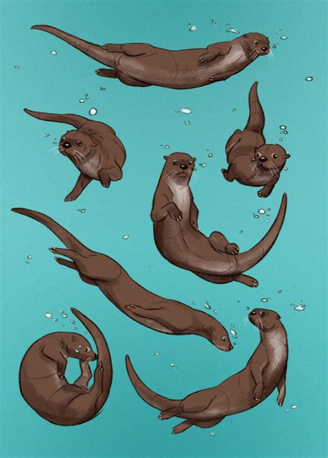 sea otter tattoo otter wallpaper desktop phone wallpapers