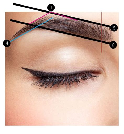 7 Tips To Shape Your Brows Like A Pro by Best 25 Eyebrows Ideas On Tips