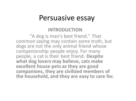 Informative Essay Introduction Exles by Essay Writing Cats And Dogs Cats