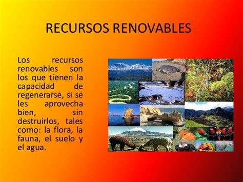 imagenes recursos naturales no renovables imagenes de los recursos naturales renovables imagui