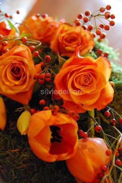 fiori arancioni fiori arancioni silviadeifiori