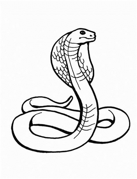 coloring pages cobra snake 31 best images about reptiles on pinterest funny