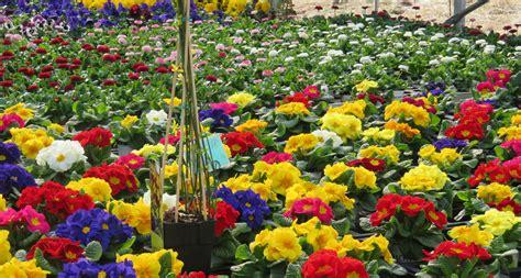 biologischer gartenbau blumen paradies becher - Biologischer Gartenbau