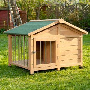 box per cani con cucce caseta para perros aspectos a considerar al comprar una