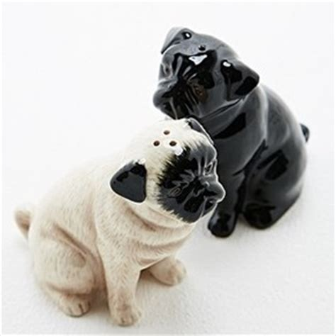 accessories for pugs related keywords suggestions for pug accessories
