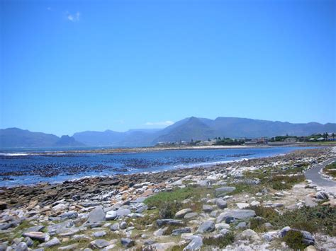 table mountain bookings table mountain national park