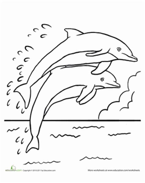 preschool coloring pages dolphin leaping dolphins worksheet education com