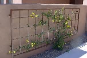 Diy Metal Trellis Pinterest The World S Catalog Of Ideas