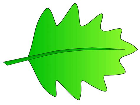 leaf clipart green leaves clip clipart panda free clipart images