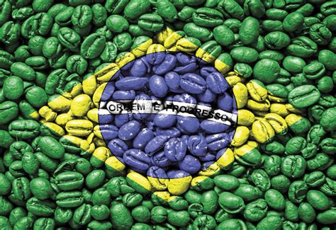 Country Home Plans by Brazil Grows Me Coffee Market Worth 65mn