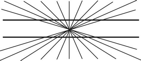 ilusiones opticas hering tus ojos te enga 241 an c 243 mo funcionan las ilusiones 243 pticas