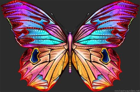 Big Butterfly big butterfly other nature background wallpapers on desktop nexus image 177457