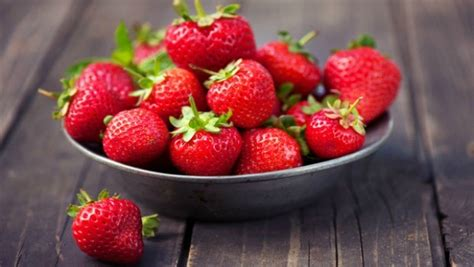 fruit upset stomach foods for upset stomach vomiting and constipation vkool