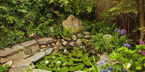 tropical landscaping ideas tropical landscaping ideas landscaping network