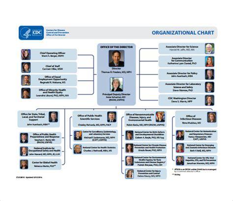 printable blank organizational chart sle blank organizational chart 8 documents in pdf