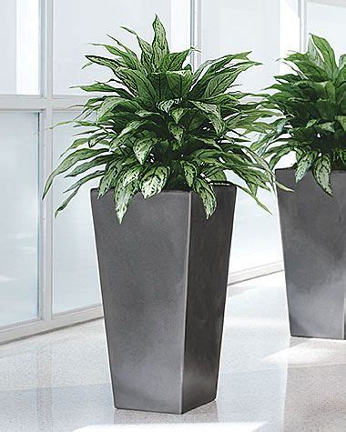 pewter floor vases 1000 images about ideas for the house on