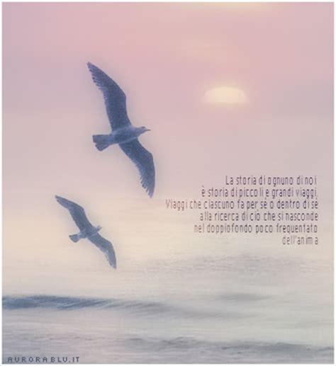 frasi da il gabbiano jonathan livingston sulle ali della libert 224 su pensieri di vita