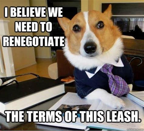 Lawyer Dog Meme - top five lawyer dog internet meme petcarerx