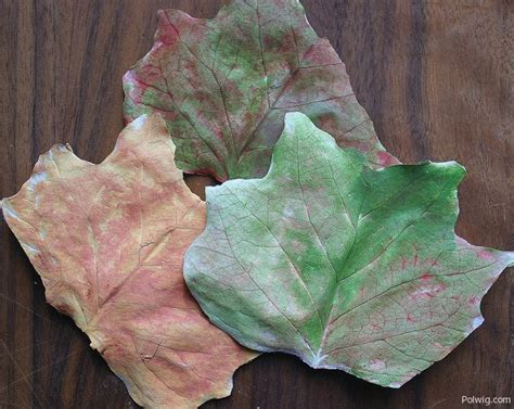 autumn leaves crafts for fall leaves craft autumn craft ideas for