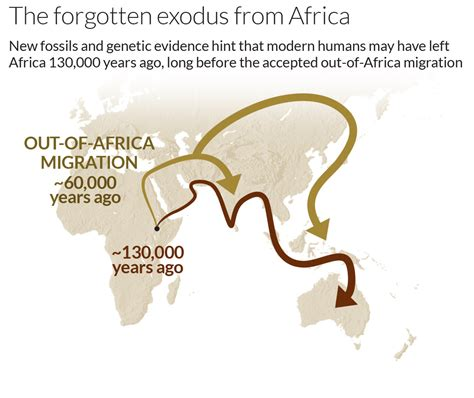 the forgotten exodus the into africa theory of human evolution books human exodus may reached china 100 000 years ago