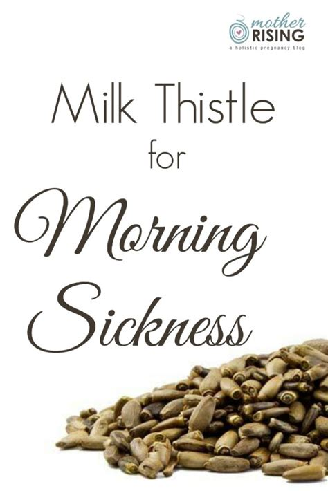 Liver Detox To Help Nausea by Milk Thistle For Morning Sickness Rising