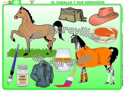 imagenes de animales y sus derivados los animales y sus derivados imagui