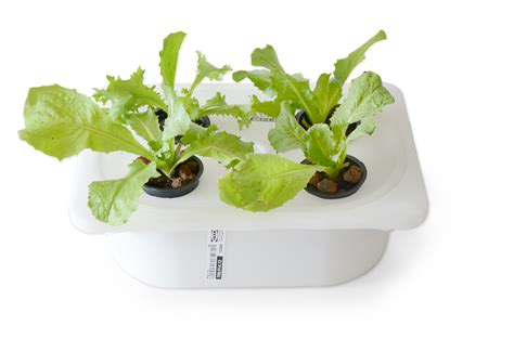Ikea Hydroponics Garden Eliooo Grow Your Food Or How To Go To Ikea 174 And Build A