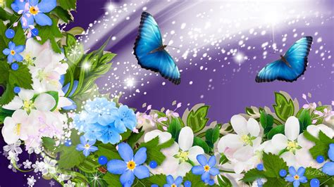 flowers photos beautiful summer flower and butterfly image images