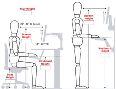 Desk Top Height how to ergonomically optimize your workspace