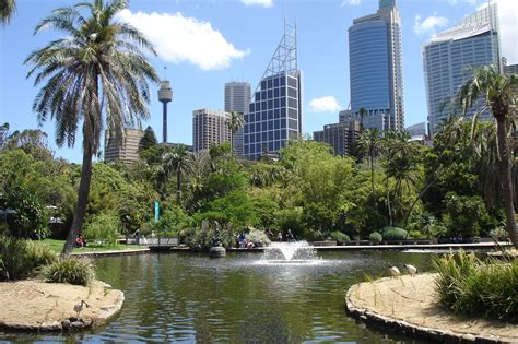 The Royal Botanic Gardens Sydney The Royal Botanic Gardens Tourism Resort Best Travel
