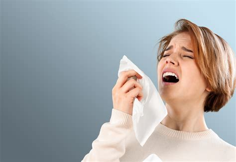 Detox Sneezing Runny Nose by Cause Of Hay Fever Allergies Found In The Last Place You D