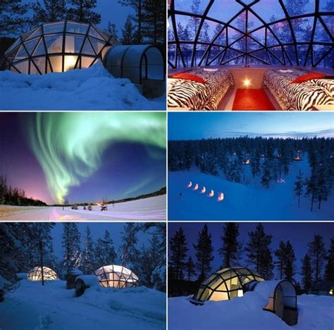 igloo under northern lights rent a glass igloo in finland and sleep under the northern