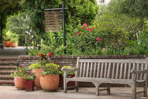 flower pot bench botanical gardens bench and flower pots photograph by