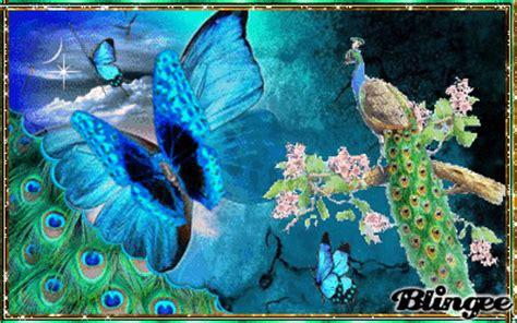 imagenes de mariposas azules animadas mariposas azules fotograf 237 a 131762069 blingee com