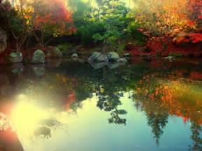 Beautiful Colours autumn beautiful color colorful colors colour colours garden