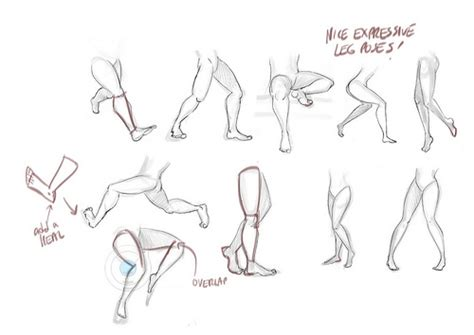 yorkie broken leg how to draw broken leg