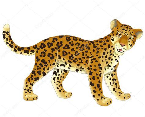 imagenes animadas de un jaguar leopardo fotos de stock 169 agaes8080 40615345