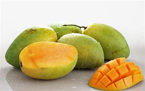 Jepit Rambut Tumbuhan Buah Buahan aneka manfaat buah mangga untuk kesehatan dan kecantikan