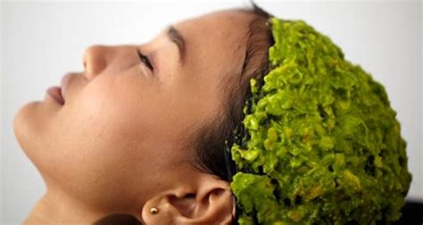 Masker Rambut Alpukat manfaat alpukat untuk rambut cara membuat masker alpukat