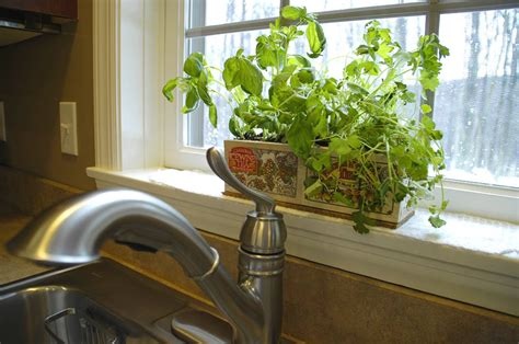 kitchen herb garden ideas archives living rich on