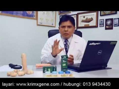 Promo Minyak Bulus Lintah Hitam Daun Bungkus Asli Papua 100 Original 1 urut