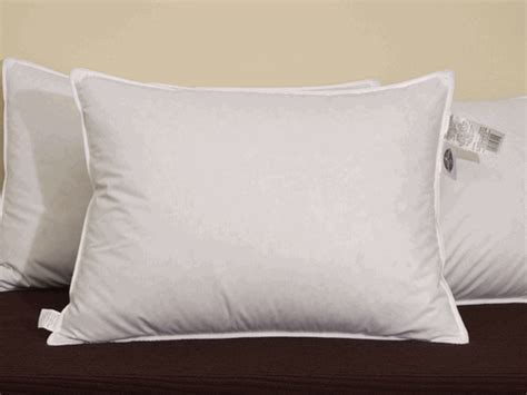 Pacific Coast Pillows Hotel Collection by Pacific Coast Surround Standard Pillow Set Featured