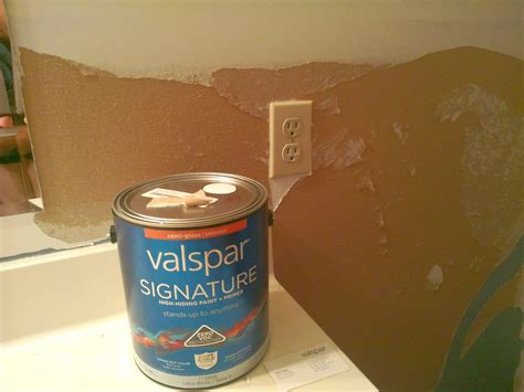 Top 179 Complaints And Reviews About Valspar