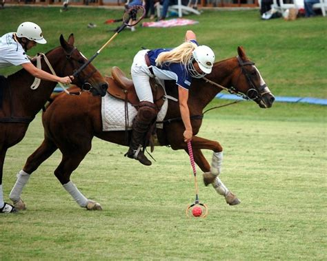 is horseback a sport 28 images horse riding is a sport quotes quotesgram horse riding
